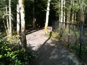 beaver lake graveled trail
